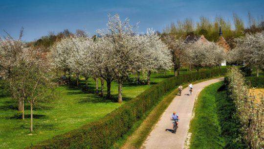Vakantietip: Met de fiets op ontdekking door Limburg