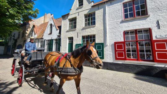 Toerist in eigen land: zes inspirerende tips om Brugge te (her)ontdekken