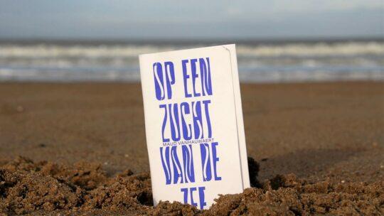 'Zeezucht' nodigt uit voor een poëtische wandeling langs unieke kunstwerken, op een zucht van de zee