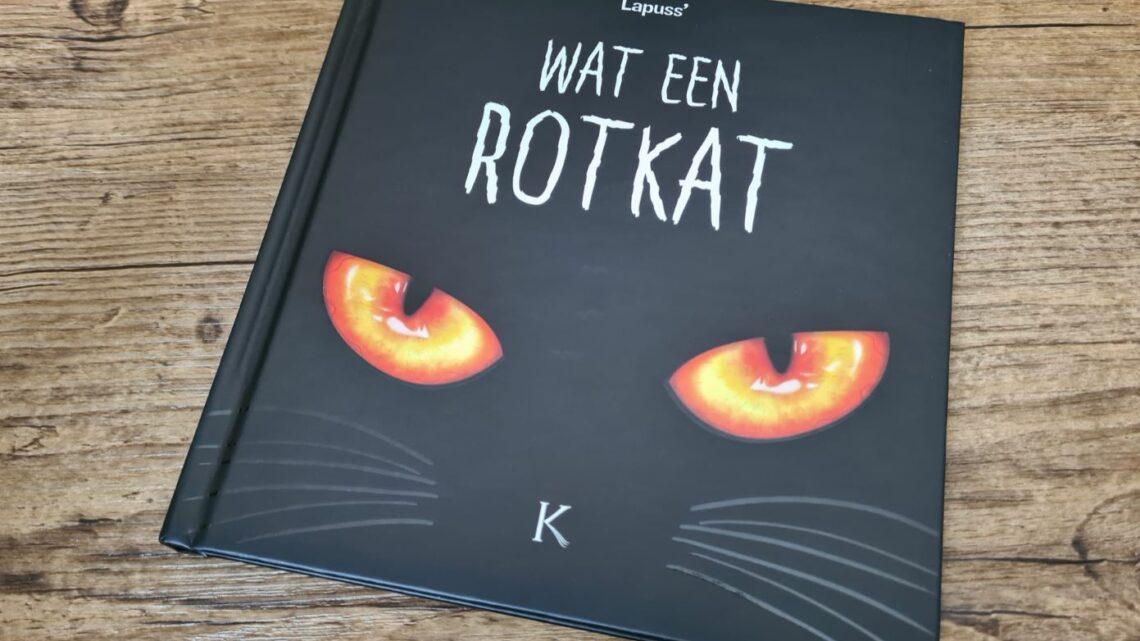 De humoristische waarheid over de schattige viervoeters in 'Wat een rotkat'