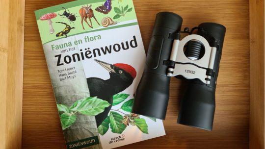 Fauna en flora van het Zoniënwoud: de ideale gids voor een wandeling in Unesco Werelderfgoed